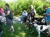 GreyhoundPlanetDaySept132009015