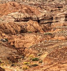Wash (arbyreed) Tags: sandstone dry exposed eroded deseert desertwash arbyreed