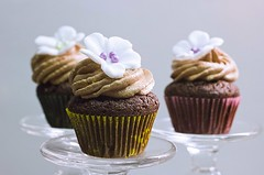Nutella_4 (EvasSvammel) Tags: cupcakes chocolate nutella