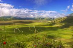 Pian Grande (Fil.ippo) Tags: panorama green landscape nikon meadow poppies 18200 filippo paesaggio umbria papaveri norcia castelluccio piangrande d7000 filippobianchi