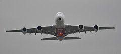 [13:59] EK0002 LHR-DXB (A380spotter) Tags: takeoff departure climbout gearinmotion gim retraction belly strobe beacon airbus a380 800 msn0132 a6eek 38l ultralongrangeconfirguration 14f76j399y الإمارات emiratesairline uae ek ek0002 lhrdxb runway09r 09r london heathrow egll lhr