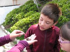 Visita Jardín Botánico Escuela G130 Baquedano