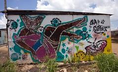 Ola Shutters (Mr Baggins) Tags: streetart graffiti stencilart soweto kliptown ladyaiko
