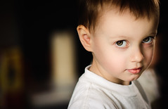 My boy... (Sylvain_Latouche) Tags: portrait eye ambientlight alix 135mmf2 sylvainlatouche