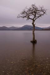 Millarochy bay - Loch Lomond (Ayrshire & Arran Photo (Richard Cottrell)) Tags: longexposure tree tourism water landscape scotland europe loch lomond millarochy 10stop {vision}:{sunset}=0617 {vision}:{sky}=0868 {vision}:{car}=0577