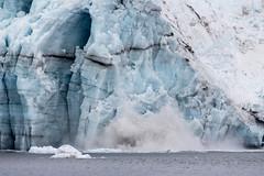 IMG_4436a (markbyzewski) Tags: alaska ugly glacierbaynationalpark