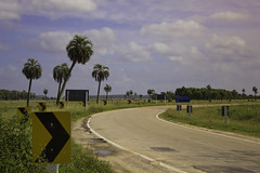 curve and palms (wesp2011) Tags: road signs canon palms camino palmeras palmtree nubes seales rocha clods valizas 550d t2i