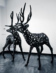 Deers (Rebel Yell 82nd) Tags: italy milan art monochrome nikon italia arte contemporary modernart milano artemoderna d7000 spaziosantandrea