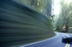 Moving car along Highway 199 running through Jedediah Smith Redwoods (Jim Corwin's PhotoStream) Tags: road trip vacation sun blur beautiful beauty horizontal america outdoors photography countryside highway solitude shadows pavement infinity famous sightseeing fast nobody landmark icon location adventure direction evergreen journey future environment remote daytime winding redwoods traveling curve iconic promise forests naturalworld delnortecounty conifer highway199 publicland locallandmark beautyinnature jedediahsmithredwoods gettingawayfromitall dividingline sunbreaks twolanehighway thewayforward sideofcar lushfoilage