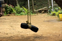 Tyre swing Dare Nature Wayanad