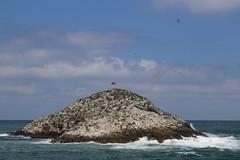 Island (kadir kandra) Tags: sea canon turkey island eos focus istanbul blacksea 70d