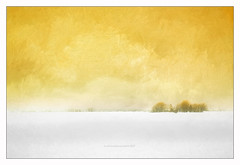 horizon (patrice ouellet) Tags: patricephotographiste horizon painting yellow jaune farmlands rural agriculture