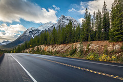 Cruising the Icefields Parkway (Kirk Lougheed) Tags: alberta banff banffnationalpark canada canadian canadianrockies icefieldsparkway autumn fall forest landscape mountain nationalpark outdoor road