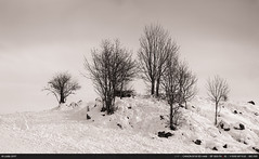 6/52 : La montagne en hiver (Ludtz) Tags: ludtz canon canoneos5dmkiii 5dmkiii 74 hautesavoie montagne mountain alpes alps winter hiver plainejoux neige snow panorama 52weeks 52semaines 52weeksthe2017edition weeksemaine062017