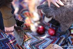 Arizona Picnic 14 (Tayma-Leigh) Tags: bjd minifee mnf fairyland rheia inessencecreations inessence crazykimochi gyhm fleecefeatherstudios