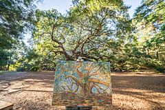 painters drawing of an old angel oak in charleston SC (DigiDreamGrafix.com) Tags: oak angel sc charleston green leaves tree old ocean moss south vacation unique historic protected island oldest john carolina johns artist painting paint draw fine art finest beautiful