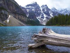 Moraine Lake Alberta, Canada (Cooke Photo) Tags: moraine lakemoraine alberta canada canadianrockies moutains lake glaciellake