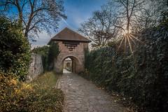 Esztergom (Vagelis Pikoulas) Tags: esztergom castle hungary travel sun sunshine sunburst canon 6d tokina 1628mm landscape november 2016 autumn europe