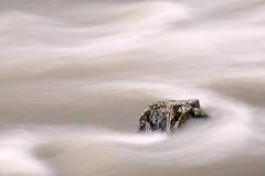 Je m'accroche ! (Marc ALMECIJA) Tags: agout eau water wasser nautre natur pose longue long exposure exposition fliet rivière river sony rx10