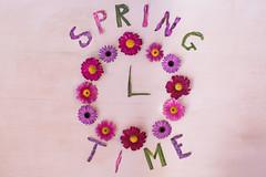 11/52 Cenital (Nathalie Le Bris) Tags: cenital stilllife flor flower time clock conceptual color couleur temps printemps spring primavera