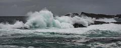 Nee Islets - New Zealand (Vince O'Sullivan) Tags: 2017 australasia february newzealand southisland fiordland southland nz neeislets waves water coast seascape nikon nikkor 80400mmf4556dvr