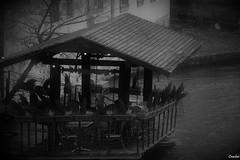 Disturbing City II (Crashei00) Tags: strasbourg france blackandwhite black white noiretblanc noir blanc nikon picture photo photographie photography wood bois water eau disturbing inquiétant