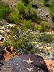 For The Birds (xjblue) Tags: 2017 mtb stgeorge area desert race rampage redrock rockart trip petroglyph utah southernutah volcanic rock bird view