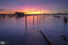 SOMEDAY (jopetsy) Tags: alabang muntinlupa philippines sunrise fish boat landscape landscapes seascape seascapes lake bridge log