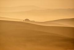 Layers & Lines #12 (Corsaro078) Tags: mist fog landscape hills tuscany toscana nebbia paesaggio colline