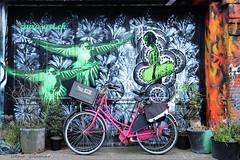 Vélos et peinture murale à Amsterdam.. (Hélène Quintaine) Tags: streetart amsterdam rose gris nederland tags mandala vert peinture capitale rue bicyclette mur paysbas oiseau cadre vélo roue graffitis hollande artderue danseuse peinturemurale cageot