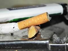 upos (cigarette butt) (ariel gitana) Tags: macro colors philippines telephoto digitalcamera pinoy pinas artphotography bridgecamera kodakero likhangpinoy nikonp100