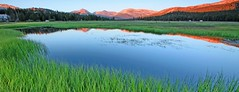 toulumne meadows sunset III (larrygomez46) Tags: california sunset outdoors landscapes meadows environment nationalparks yosemitenp toulumnemeadows camphike fineartsimages ancientnativelands