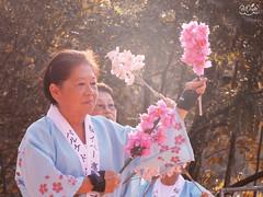 35º Festa da Cerejeira do Parque do Carmo (Pri Mizuh) Tags: parque brazil do da sakura festa sakuramatsuri carmo cerejeira 35º 35ºfestadascerejeirasdoparquedocarmo