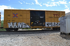 (huntingtherare) Tags: train graffiti freight mane rollingstock evade evades