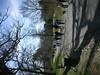 Spring2009037