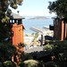 Coit Tower_5