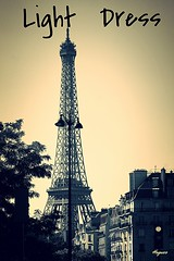 light dress (bernawy hugues kossi huo) Tags: light paris metal different tour shed eiffel can invalides use civilization notion pacifist