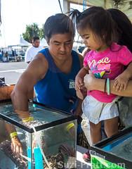 8th Annual Hawaii Fish and Seafood Festival in Honolulu's Fishing Village (spratt504) Tags: ocean sea fish hawaii wildlife seafood honolulu foodphotography pier38 eventphotography hawaiifish hawaiiphotos festivalphotography hawaiifestival hawaiievent hawaiifishandseafoodfestival honolulufishingvillage pacificislandfisheriesgroup