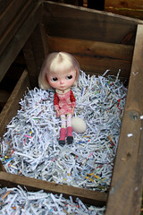 199-365 Nettle is nesting.