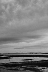 Troon Barrassie Beach (Gordon Gray Photography) Tags: uk winter sea sky blackandwhite white seascape black cold beach wet water photography scotland seaside sand scenery view tide scenic peaceful coastline lowtide troon barrassie