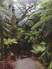 1524801_699106923441237_1958817421_n (parramitta) Tags: newzealand amazing traveling