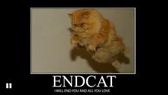 ENDCAT (likeastraightboss) Tags: demotivational