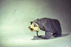 Origami Jucumari - Nguyen Hung Cuong (Masamune81) Tags: bear oso origami papel papiroflexia hung nguyen anteojos cuong spectacle jucumari