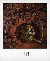 "#DailyPolaroid of 25-1-14 #119 • <a style=""font-size:0.8em;"" href=""http://www.flickr.com/photos/47939785@N05/12265127085/"" target=""_blank"">View on Flickr</a>"