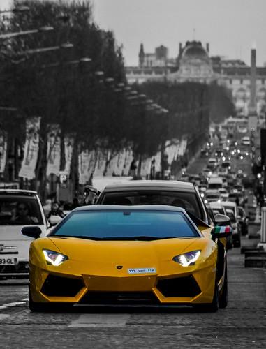 yellow in paris