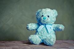 Teddy. (kensol72) Tags: portrait fuji teddy teddybear fujifilm 60mm fujinon