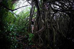 Road to Hana part 3 (Four Straites) Tags: hawaii maui hana cave venuspool