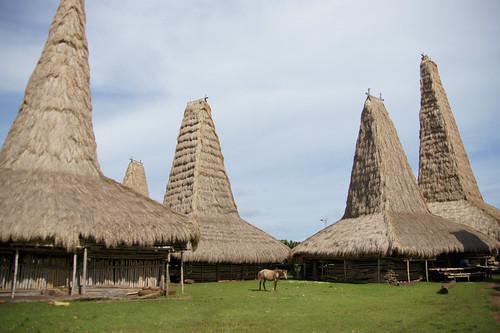 Sumba - View at Ratenggaro traditional village