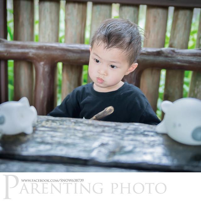 攝影師自備玩具引誘 但小赫不太領情.... XD  PS. 他比較喜歡玩樹枝