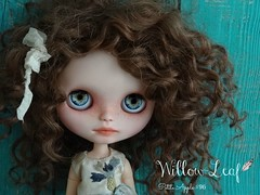 Willow-Leaf
